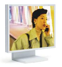 NEC-MITS LCD1880SX